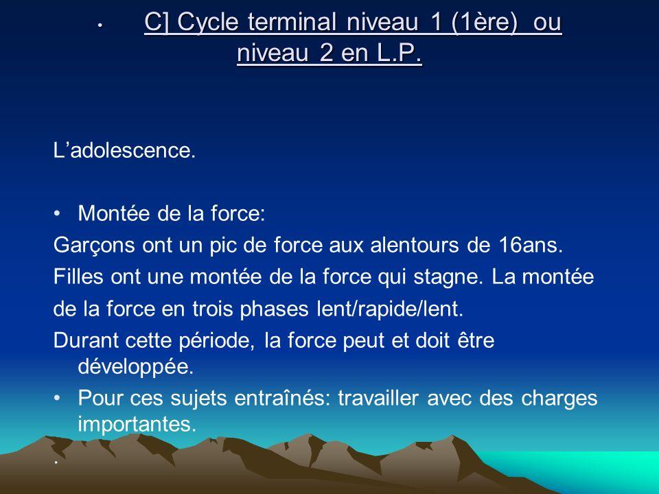 C] Cycle terminal niveau 1 (1ère) ou niveau 2 en L.P.